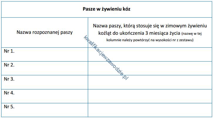 r9_pasze