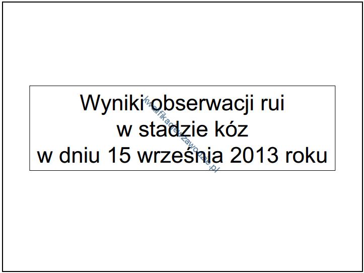 r9_prezentacja6