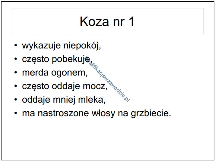 r9_prezentacja7