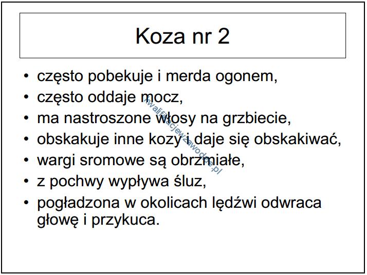 r9_prezentacja8