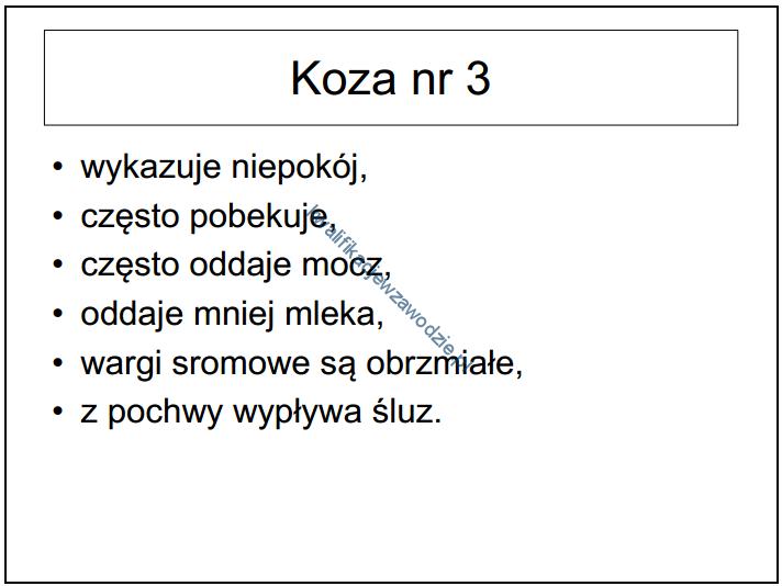 r9_prezentacja9