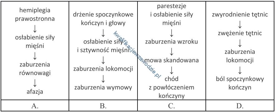 z1_schemat2