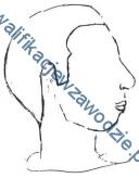 a23_profil