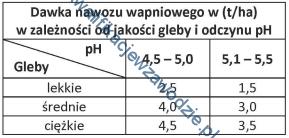 r3_tabela