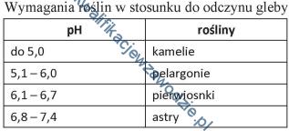 r26_tabela2