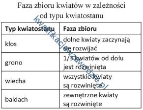 r26_tabela3