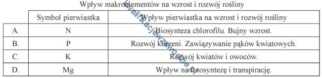 r26_tabela6