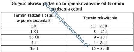 r26_tabela9