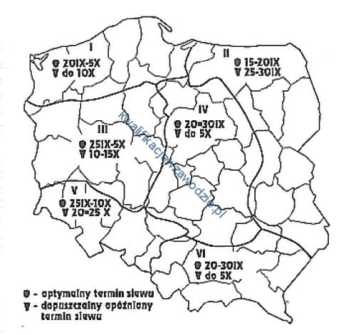 r3_mapa