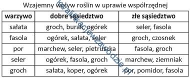 r5_tabela2