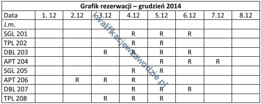 t11_grafik2