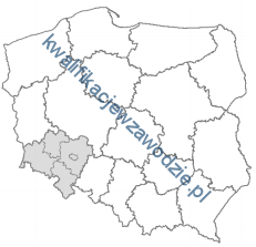 t7_mapa