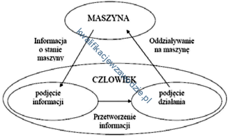 z13_diagram