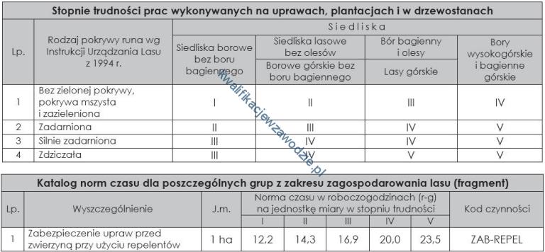r13_tabele