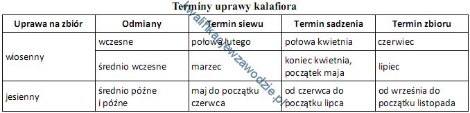 r18_tabela2