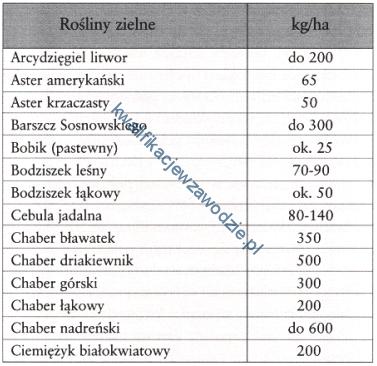 r4_tabela2