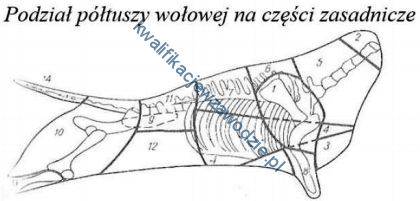 t5_poltusza