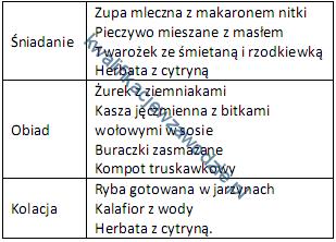 z16_jadlospis2