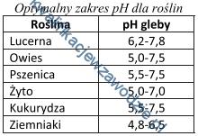 r3_tabela11