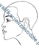 a19_profil