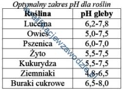 r3_tabela17