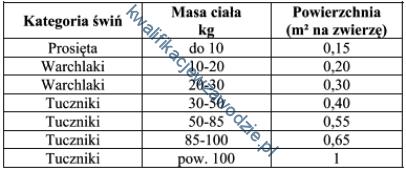 r3_tabela20