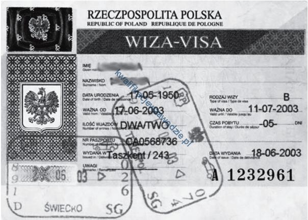 a33_wiza