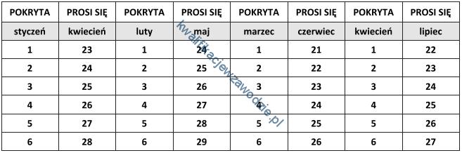 r16_tabela12