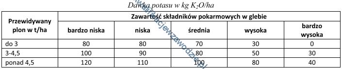 r16_tabela9