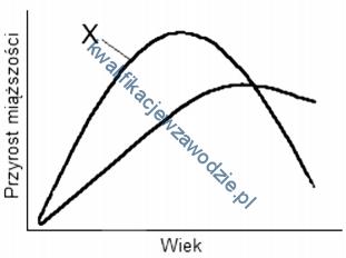 r13_wykres