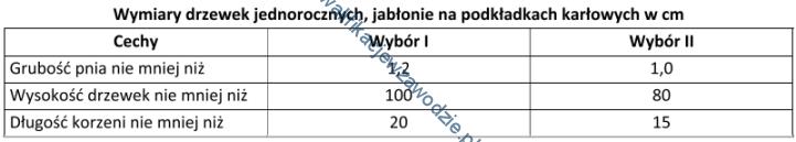 r18_tabela4