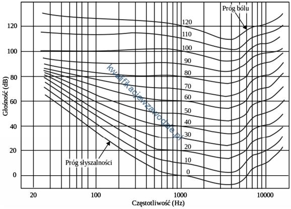 s2_wykres