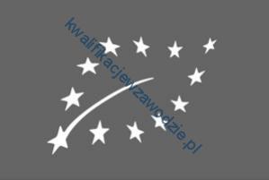 t8_logo2