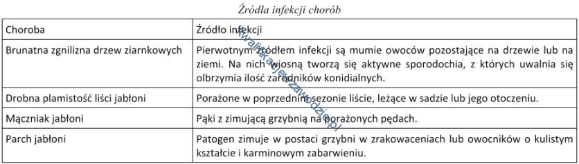 r18_tabela14