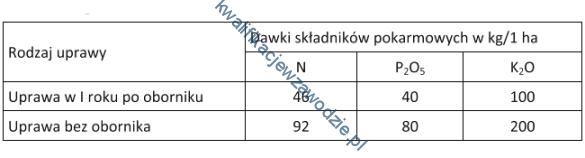 r18_tabela15