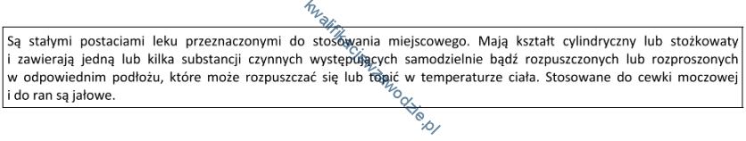 z19_opis2